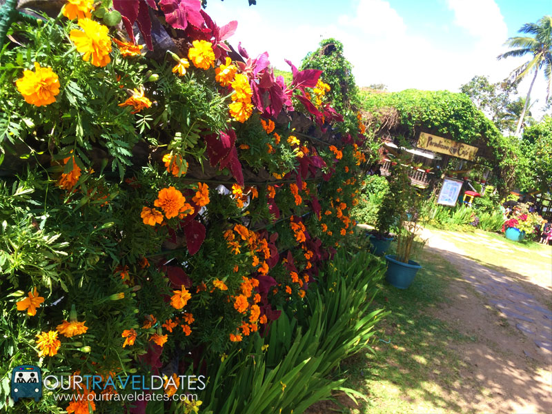 paradizoo-tagaytay-batangas-cavite-zoo-farm-power-of-three-theme-park-image5